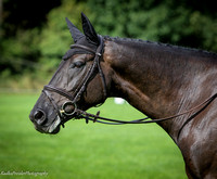 Ballindenisk International dressage CIC2** 16.9.2016